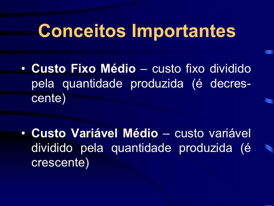 Conceitos Importantes Custo Fixo Médio – custo fixo dividido pela quantidade produzida (é decres- cente) Custo Variável Médio – custo variável dividid