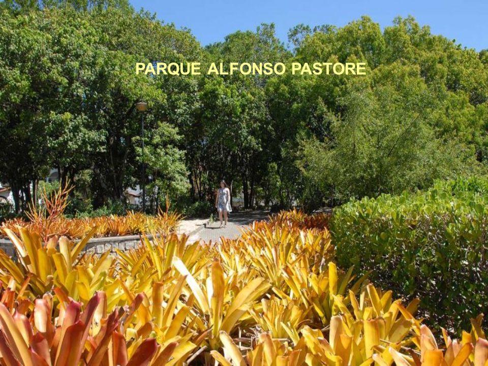 PARQUES Alfonso Pastore Barreiros Da Cebola Da Fonte Grande Do Moscoso Gruta da Onça Fazendinha Horto do Maruípe