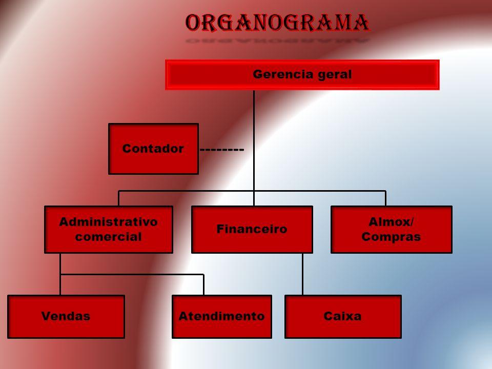 Gerencia geral Contador Administrativo comercial Financeiro Almox/ Compras VendasAtendimentoCaixa --------