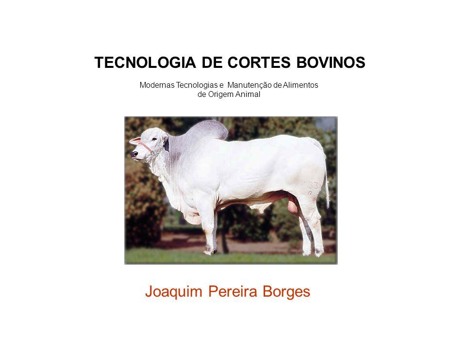 Joaquim Pereira Borges Modernas Tecnologias e Manutenção de Alimentos de Origem Animal TECNOLOGIA DE CORTES BOVINOS