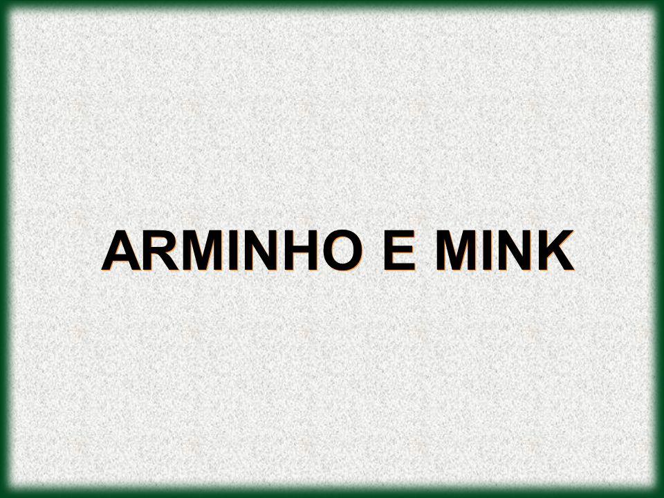 ARMINHO E MINK
