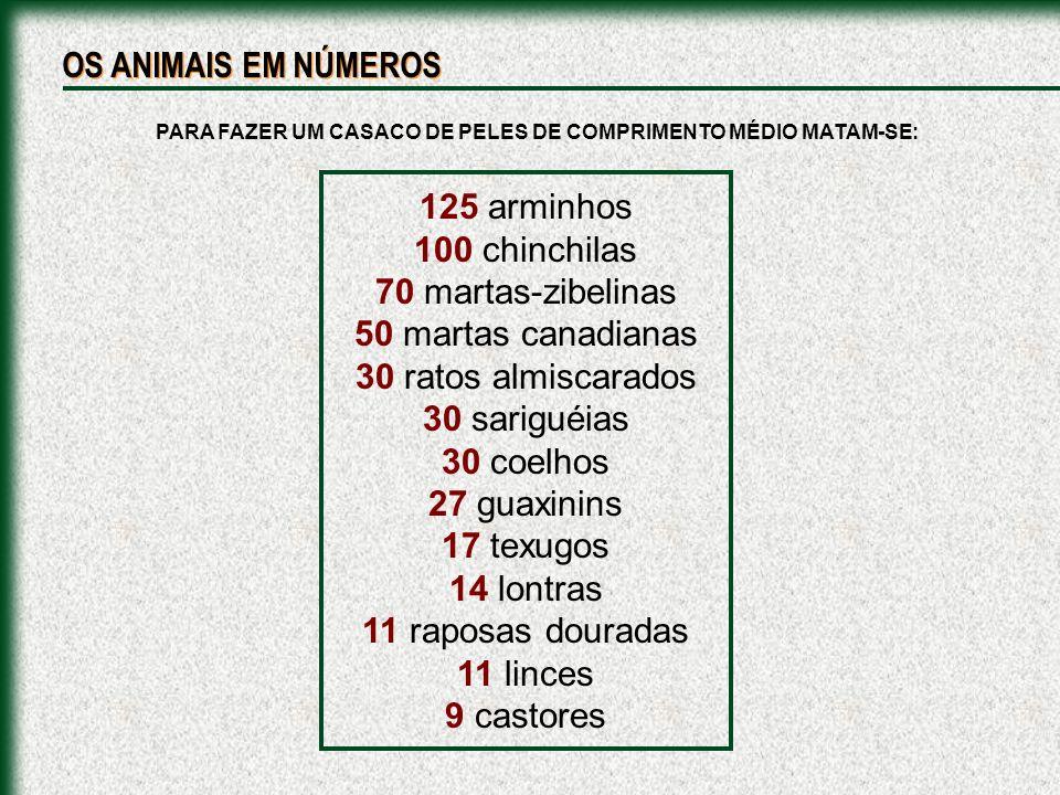 PARA FAZER UM CASACO DE PELES DE COMPRIMENTO MÉDIO MATAM-SE: 125 arminhos 100 chinchilas 70 martas-zibelinas 50 martas canadianas 30 ratos almiscarado