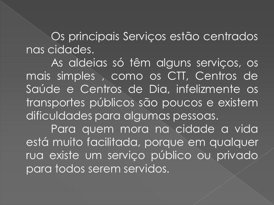 Os principais Serviços estão centrados nas cidades. As aldeias só têm alguns serviços, os mais simples, como os CTT, Centros de Saúde e Centros de Dia