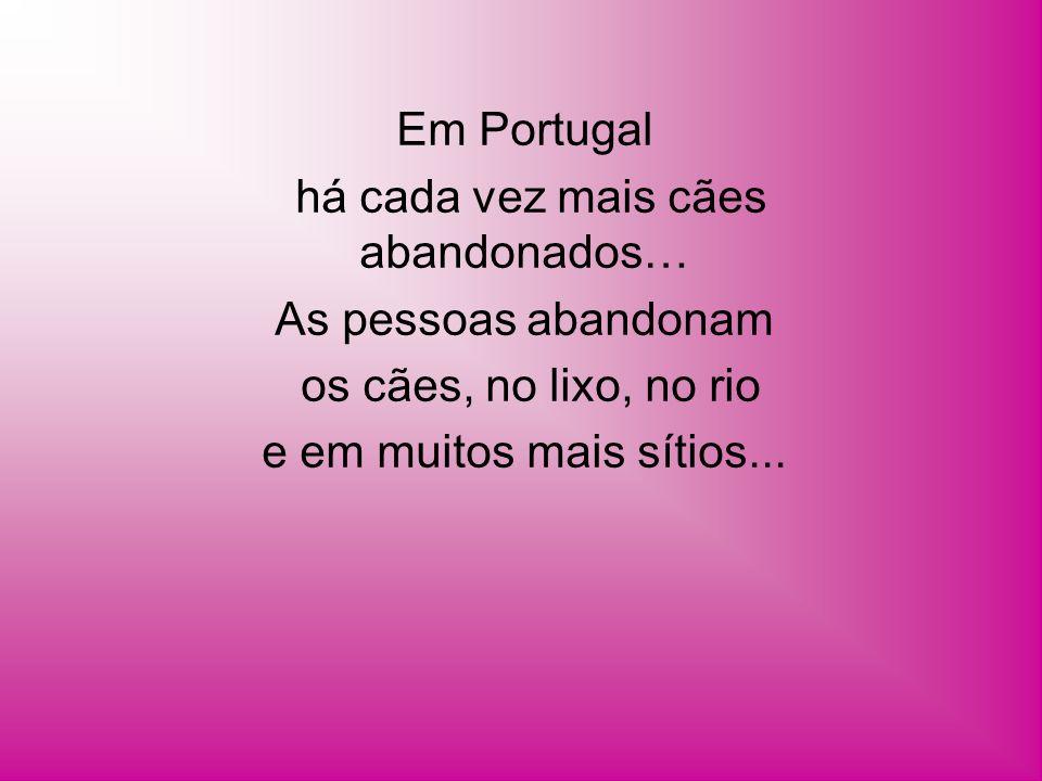 Em Portugal há cada vez mais cães abandonados… As pessoas abandonam os cães, no lixo, no rio e em muitos mais sítios...