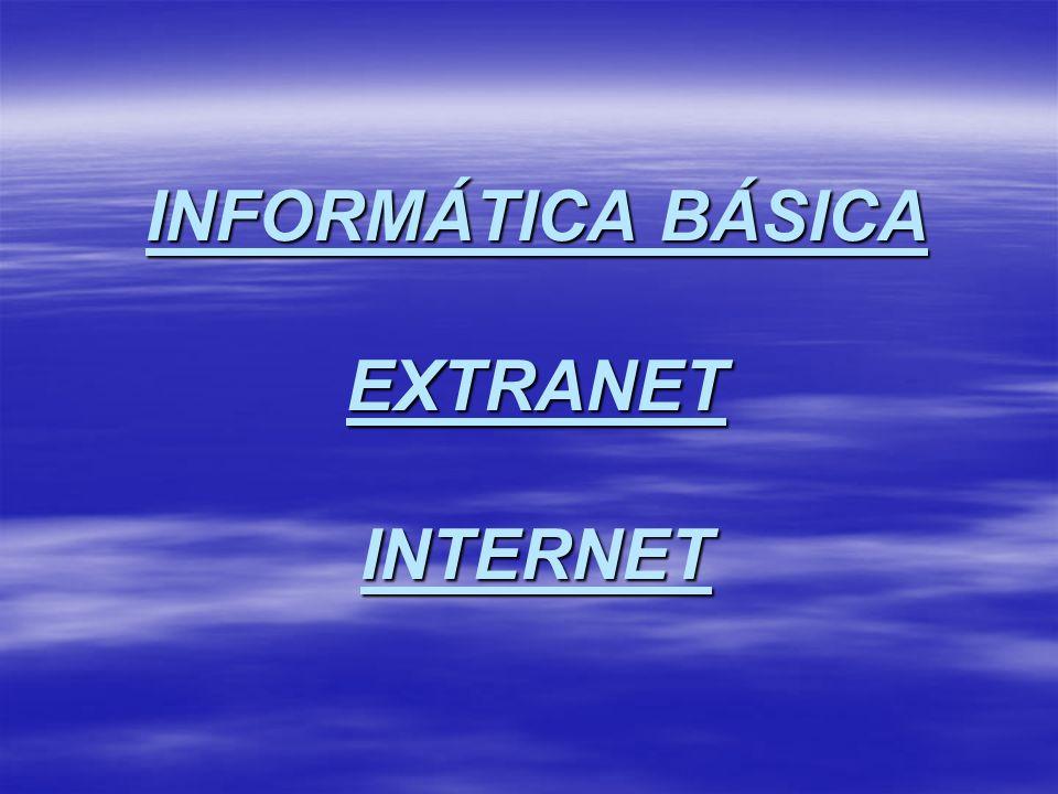 INFORMÁTICA BÁSICA EXTRANET INTERNET