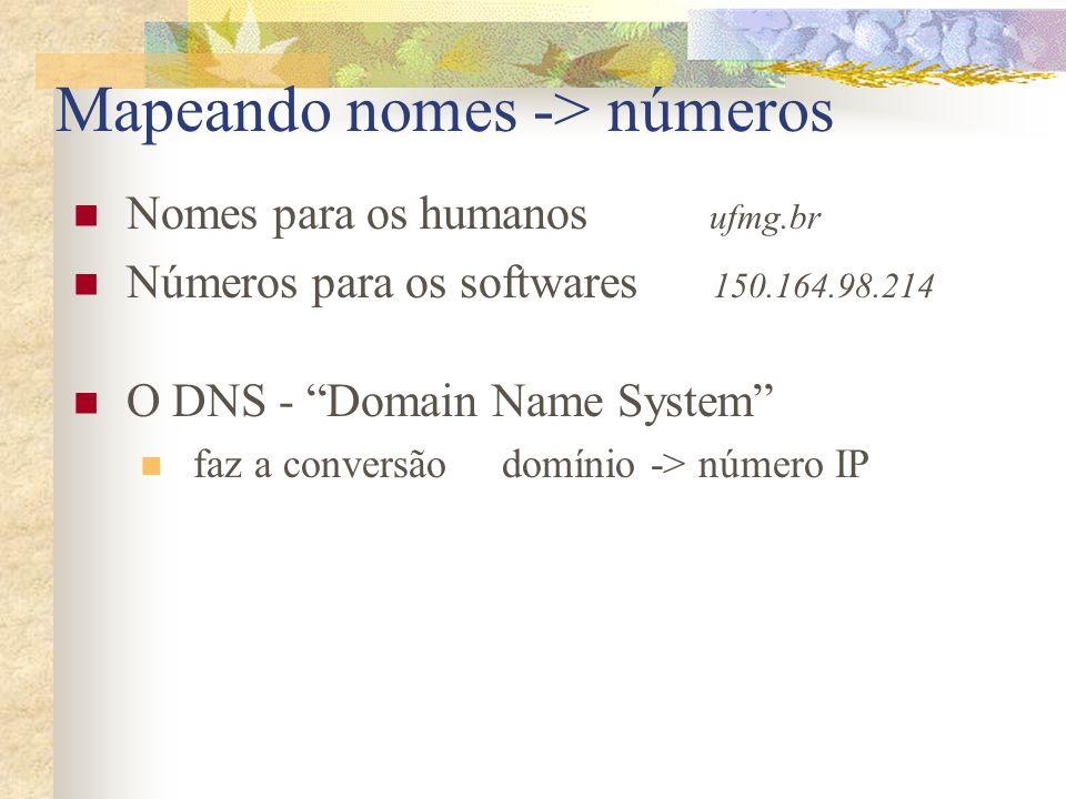 Mapeando nomes -> números Nomes para os humanos ufmg.br Números para os softwares 150.164.98.214 O DNS - Domain Name System faz a conversão domínio ->
