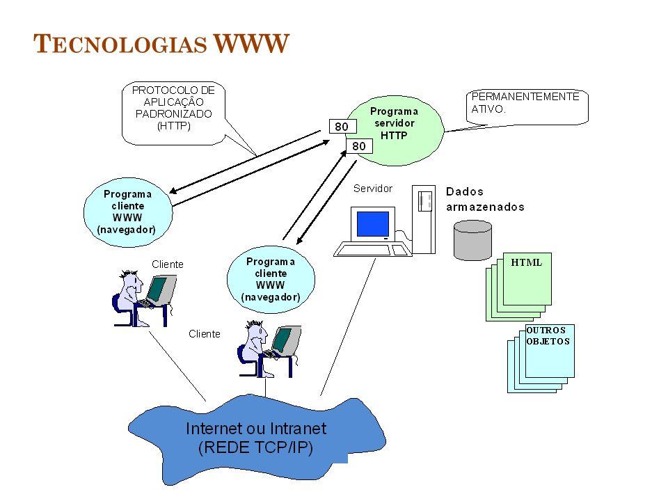 I NTRANETS E E XTRANETS Plataformas tecnológicas que aumentam a integração e aceleram o fluxo de informação Intranets: redes internas baseadas em padrões Internet Extranets: intranets que são estendidas para uso externo autorizado As intranets geralmente utilizam um portal As extranets facilitam a colaboração