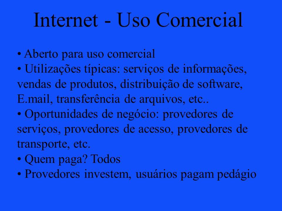 Internet - Uso Comercial Aberto para uso comercial Utilizações típicas: serviços de informações, vendas de produtos, distribuição de software, E.mail,