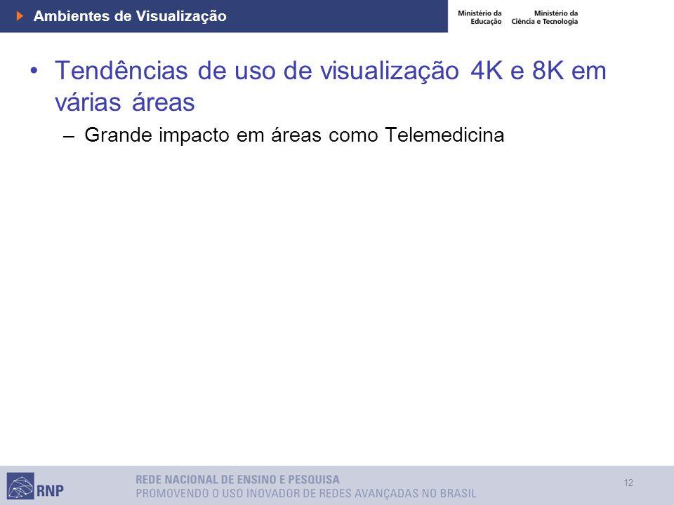 12 Ambientes de Visualização Tendências de uso de visualização 4K e 8K em várias áreas –Grande impacto em áreas como Telemedicina