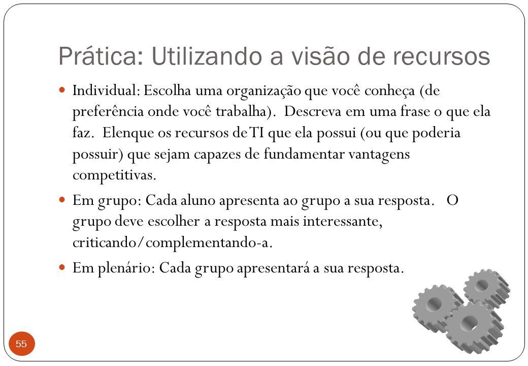 Prática: Utilizando a visão de recursos Individual: Escolha uma organização que você conheça (de preferência onde você trabalha).