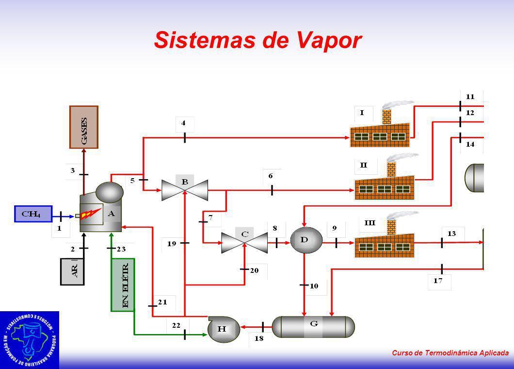 Curso de Termodinâmica Aplicada Sistemas de Vapor