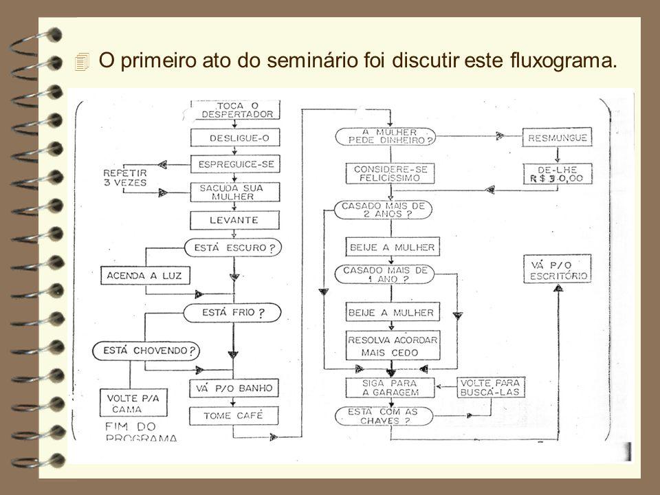 4 O primeiro ato do seminário foi discutir este fluxograma.