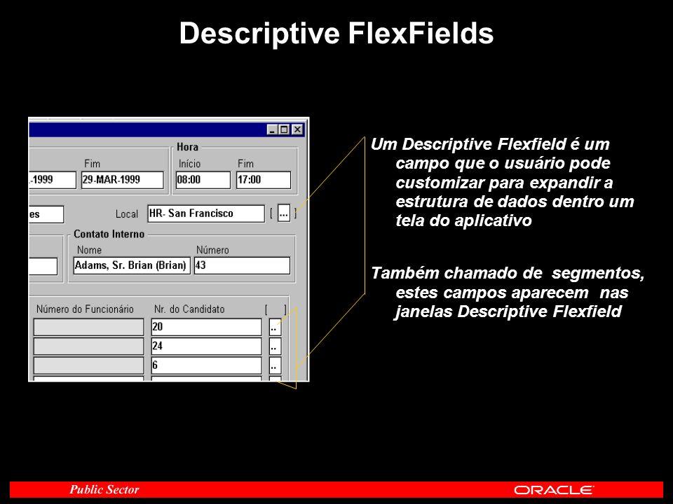 Um Descriptive Flexfield é um campo que o usuário pode customizar para expandir a estrutura de dados dentro um tela do aplicativo Também chamado de se