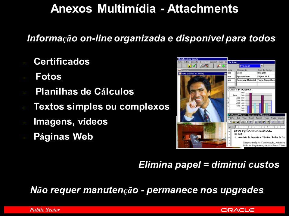 Anexos Multim í dia - Attachments - Certificados - Fotos - Planilhas de C á lculos - Textos simples ou complexos - Imagens, v í deos - P á ginas Web E