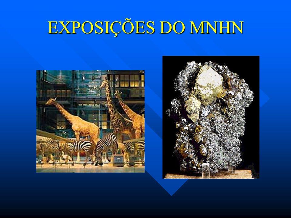EXPOSIÇÕES DO MNHN