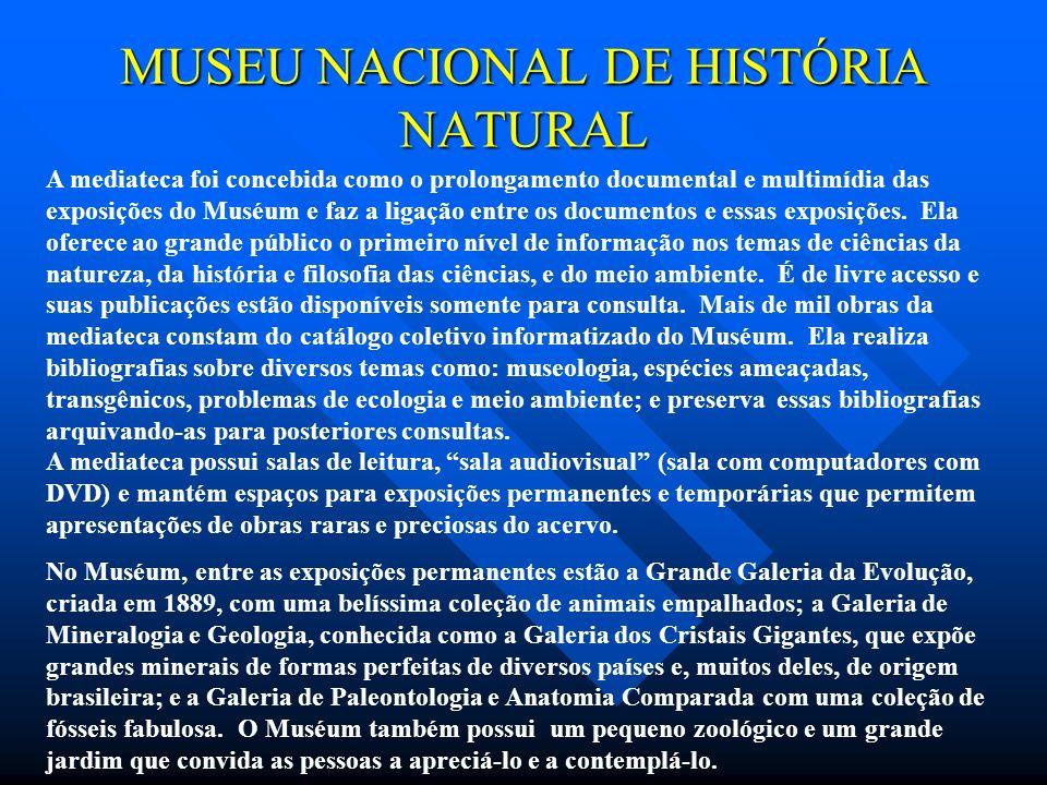 MUSEU NACIONAL DE HISTÓRIA NATURAL A mediateca foi concebida como o prolongamento documental e multimídia das exposições do Muséum e faz a ligação ent