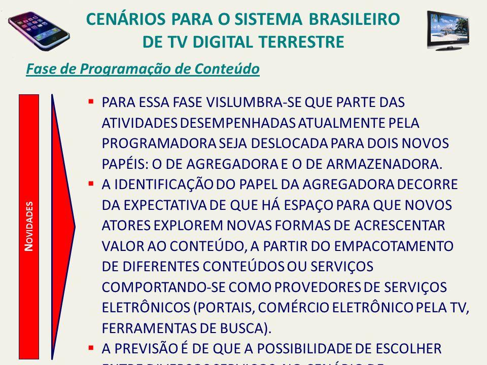 CENÁRIOS PARA O SISTEMA BRASILEIRO DE TV DIGITAL TERRESTRE N OVIDADES Fase de Programação de Conteúdo PARA ESSA FASE VISLUMBRA-SE QUE PARTE DAS ATIVID