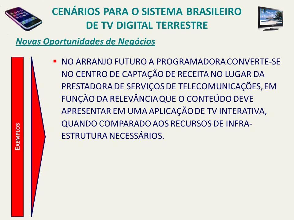 CENÁRIOS PARA O SISTEMA BRASILEIRO DE TV DIGITAL TERRESTRE E XEMPLOS Novas Oportunidades de Negócios NO ARRANJO FUTURO A PROGRAMADORA CONVERTE-SE NO C