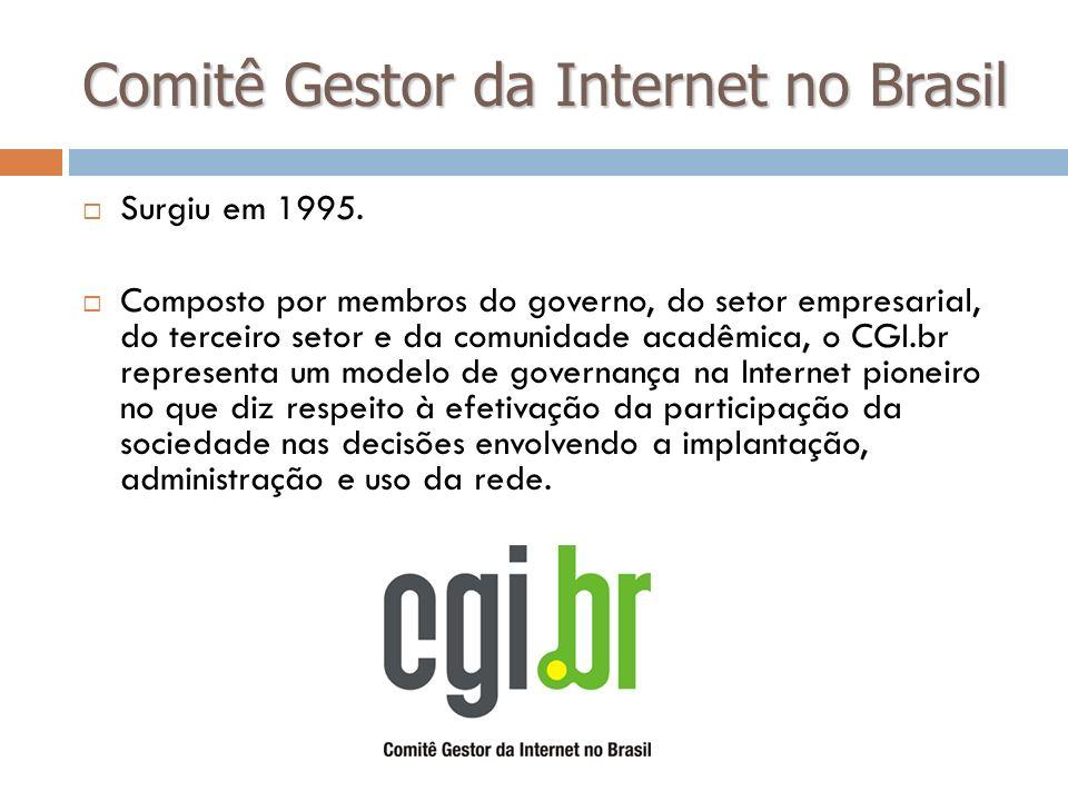 Comitê Gestor da Internet no Brasil Surgiu em 1995. Composto por membros do governo, do setor empresarial, do terceiro setor e da comunidade acadêmica