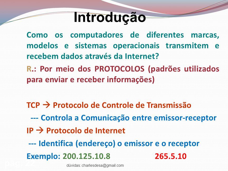 dúvidas: charlesdesa@gmail.com Introdução Como os computadores de diferentes marcas, modelos e sistemas operacionais transmitem e recebem dados através da Internet.