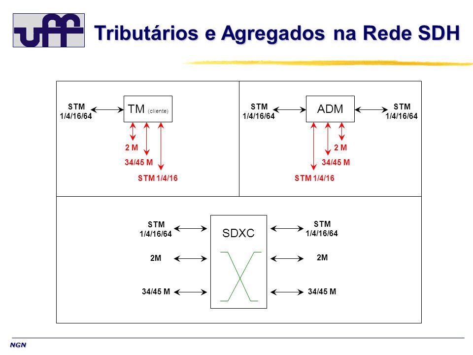 NGN SDXC ADMTM (cliente) STM 1/4/16/64 STM 1/4/16/64 STM 1/4/16/64 STM 1/4/16/64 STM 1/4/16/64 2M 34/45 M STM 1/4/16 34/45 M 2 M Tributários e Agregad