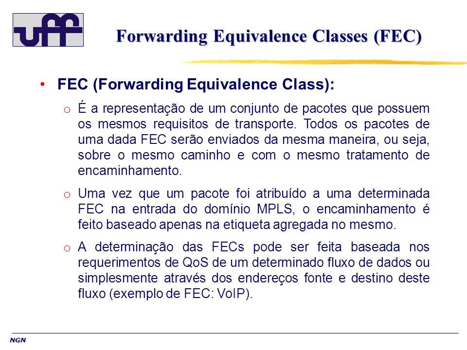 NGN Forwarding Equivalence Classes (FEC) FEC (Forwarding Equivalence Class): o É a representação de um conjunto de pacotes que possuem os mesmos requi