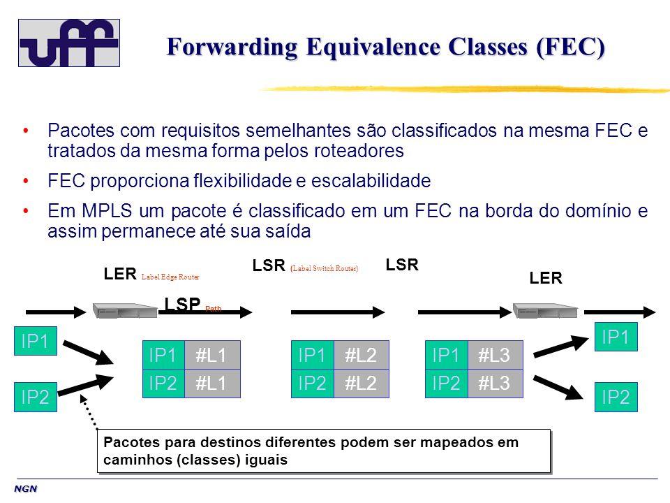 NGN Forwarding Equivalence Classes (FEC) Pacotes com requisitos semelhantes são classificados na mesma FEC e tratados da mesma forma pelos roteadores