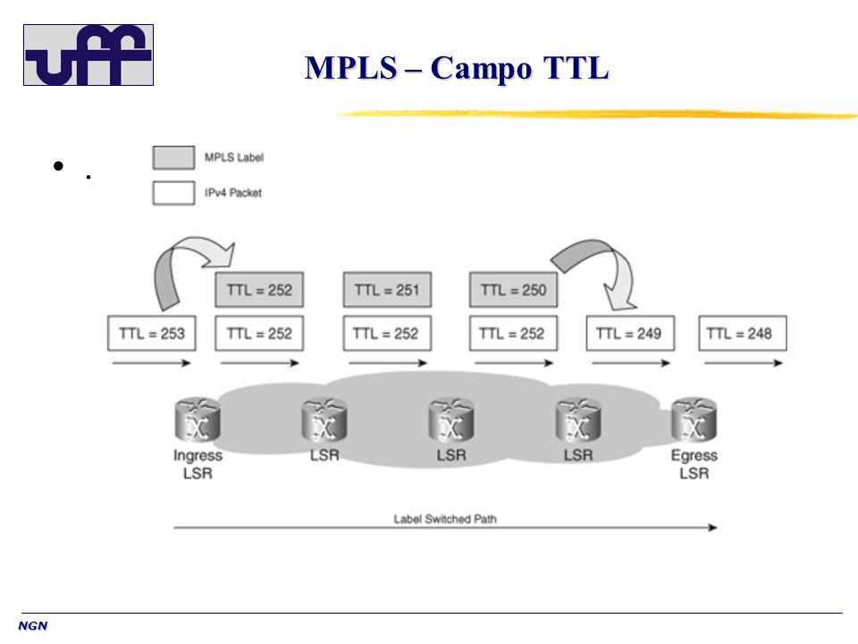 NGN MPLS – Campo TTL.