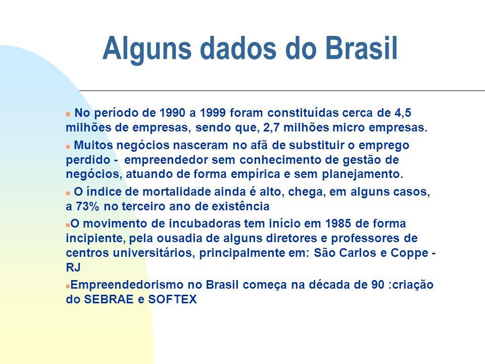 Alguns dados do Brasil n No período de 1990 a 1999 foram constituídas cerca de 4,5 milhões de empresas, sendo que, 2,7 milhões micro empresas. n Muito