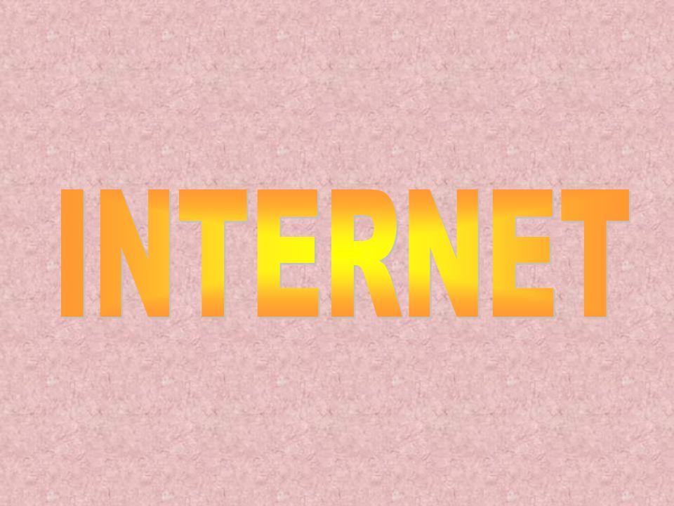 O computador deve estar em perfeito estado de conservação, não é necessariamente que seja novo (última geração), mas também não pode ser muito antigo (é preciso que a memória e o processador suportem a navegação e os programas que serão instalados em consequência da Internet).