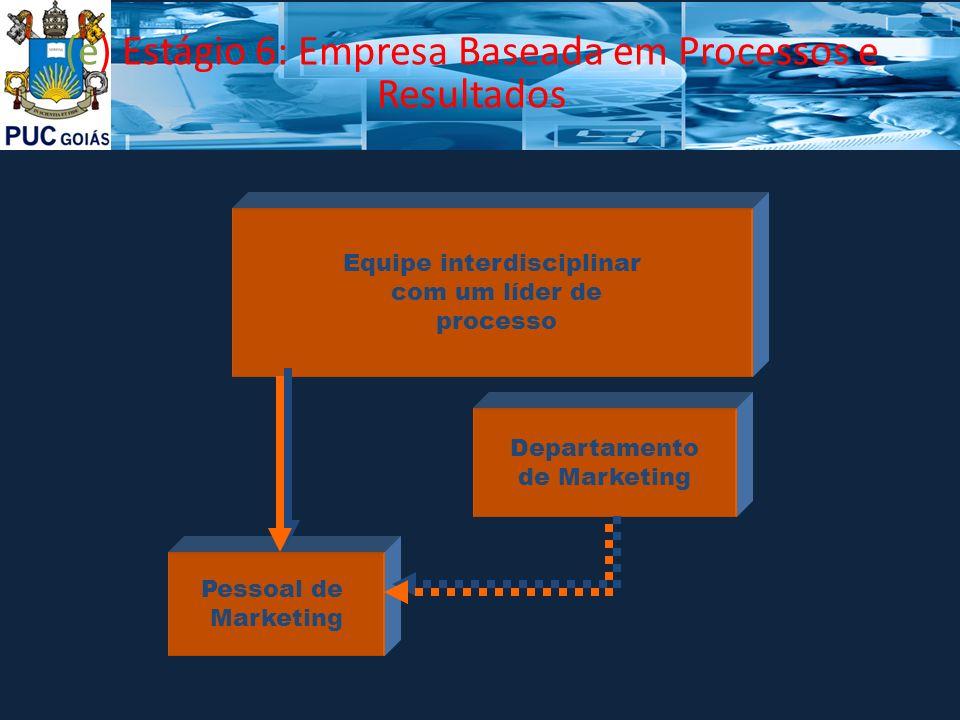 (e) Estágio 6: Empresa Baseada em Processos e Resultados Equipe interdisciplinar com um líder de processo Pessoal de Marketing Departamento de Marketi