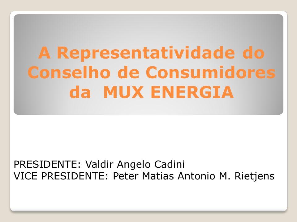 A Representatividade do Conselho de Consumidores da MUX ENERGIA PRESIDENTE: Valdir Angelo Cadini VICE PRESIDENTE: Peter Matias Antonio M. Rietjens