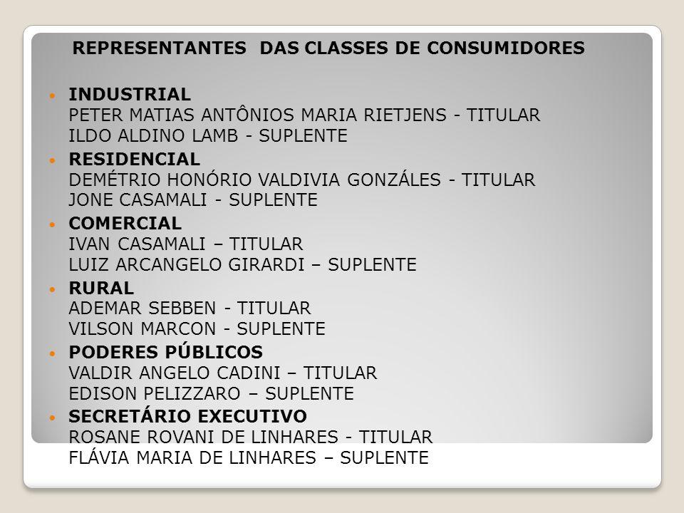 REPRESENTANTES DAS CLASSES DE CONSUMIDORES INDUSTRIAL PETER MATIAS ANTÔNIOS MARIA RIETJENS - TITULAR ILDO ALDINO LAMB - SUPLENTE RESIDENCIAL DEMÉTRIO HONÓRIO VALDIVIA GONZÁLES - TITULAR JONE CASAMALI - SUPLENTE COMERCIAL IVAN CASAMALI – TITULAR LUIZ ARCANGELO GIRARDI – SUPLENTE RURAL ADEMAR SEBBEN - TITULAR VILSON MARCON - SUPLENTE PODERES PÚBLICOS VALDIR ANGELO CADINI – TITULAR EDISON PELIZZARO – SUPLENTE SECRETÁRIO EXECUTIVO ROSANE ROVANI DE LINHARES - TITULAR FLÁVIA MARIA DE LINHARES – SUPLENTE