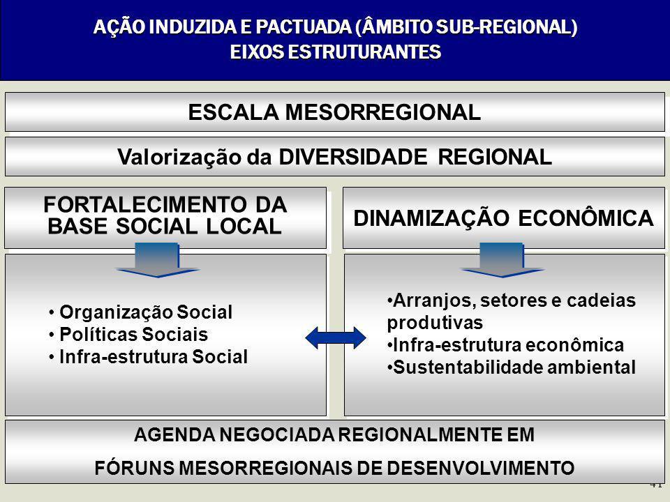 41 AÇÃO INDUZIDA E PACTUADA (ÂMBITO SUB-REGIONAL) EIXOS ESTRUTURANTES FORTALECIMENTO DA BASE SOCIAL LOCAL DINAMIZAÇÃO ECONÔMICA ESCALA MESORREGIONAL V