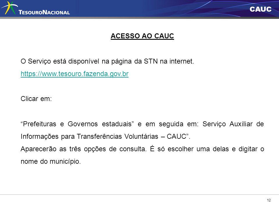 CAUC 12 ACESSO AO CAUC O Serviço está disponível na página da STN na internet. https://www.tesouro.fazenda.gov.br Clicar em: Prefeituras e Governos es