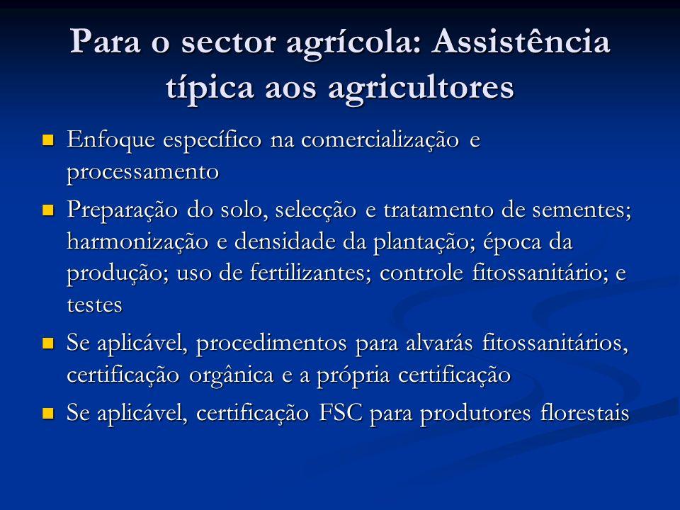 Para o sector agrícola: Assistência típica aos agricultores Enfoque específico na comercialização e processamento Enfoque específico na comercializaçã