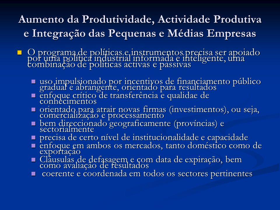 Aumento da Produtividade, Actividade Produtiva e Integração das Pequenas e Médias Empresas O programa de políticas e instrumentos precisa ser apoiado