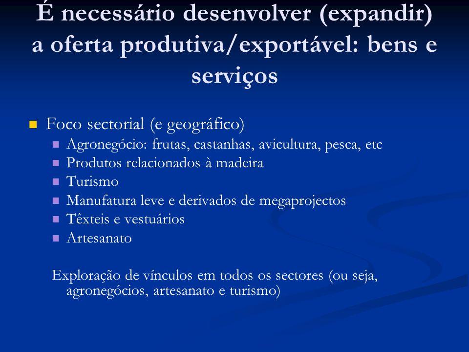 É necessário desenvolver (expandir) a oferta produtiva/exportável: bens e serviços Foco sectorial (e geográfico) Agronegócio: frutas, castanhas, avicu