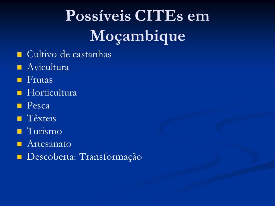 Possíveis CITEs em Moçambique Cultivo de castanhas Avicultura Frutas Horticultura Pesca Têxteis Turismo Artesanato Descoberta: Transformação