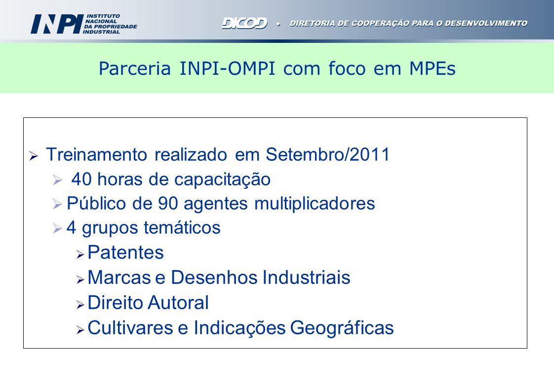 Treinamento realizado em Setembro/2011 40 horas de capacitação Público de 90 agentes multiplicadores 4 grupos temáticos Patentes Marcas e Desenhos Ind