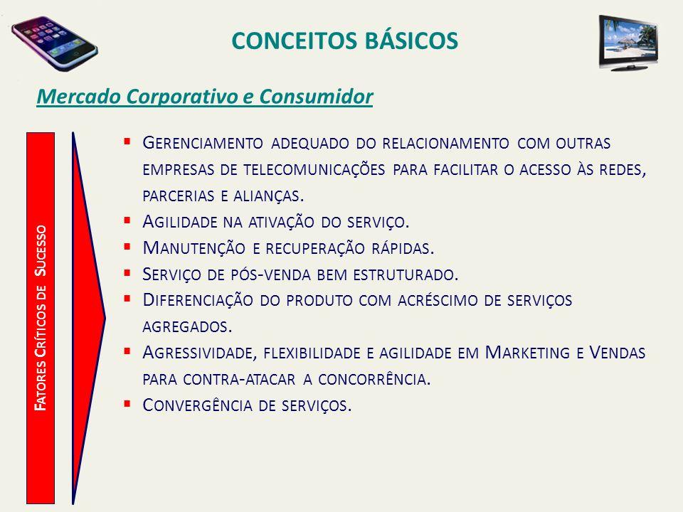 CONCEITOS BÁSICOS F ATORES C RÍTICOS DE S UCESSO Mercado Corporativo e Consumidor G ERENCIAMENTO ADEQUADO DO RELACIONAMENTO COM OUTRAS EMPRESAS DE TEL