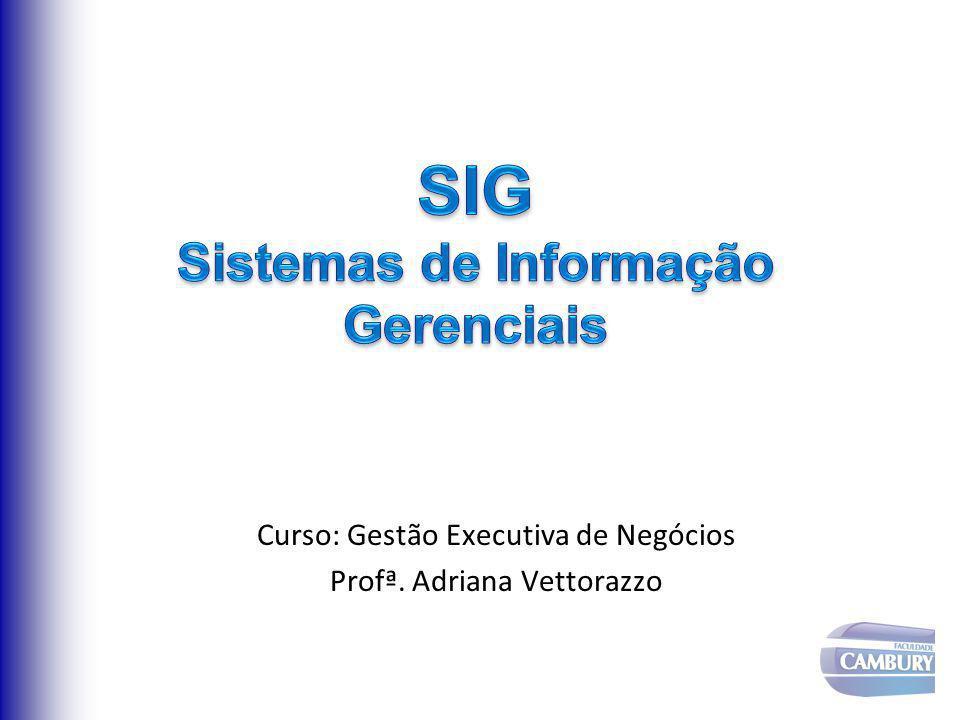 Sistemas de Apoio Gerencial: fornecem informações e contribuem no processo de tomada de decisões.