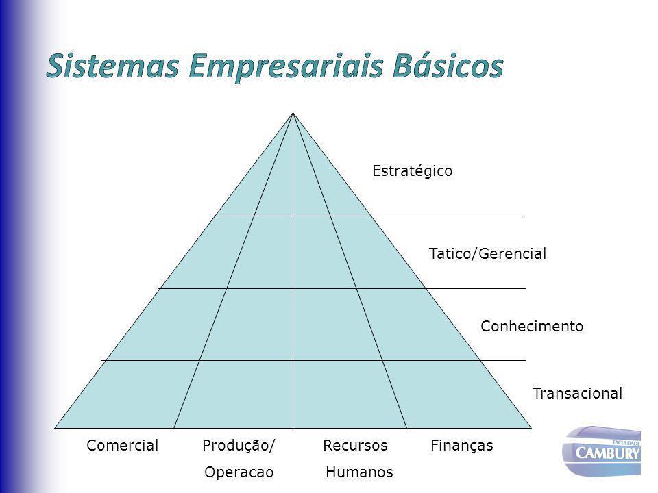 Administração Estratégica Administração Tática Administração Operacional Características da Decisão Não-estruturada Semi-estruturada Estruturada