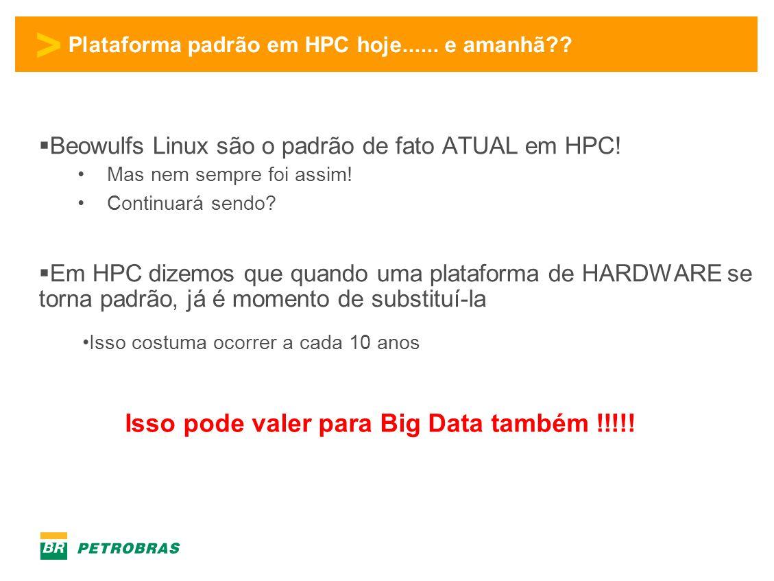 > Plataforma padrão em HPC hoje......e amanhã?. Beowulfs Linux são o padrão de fato ATUAL em HPC.