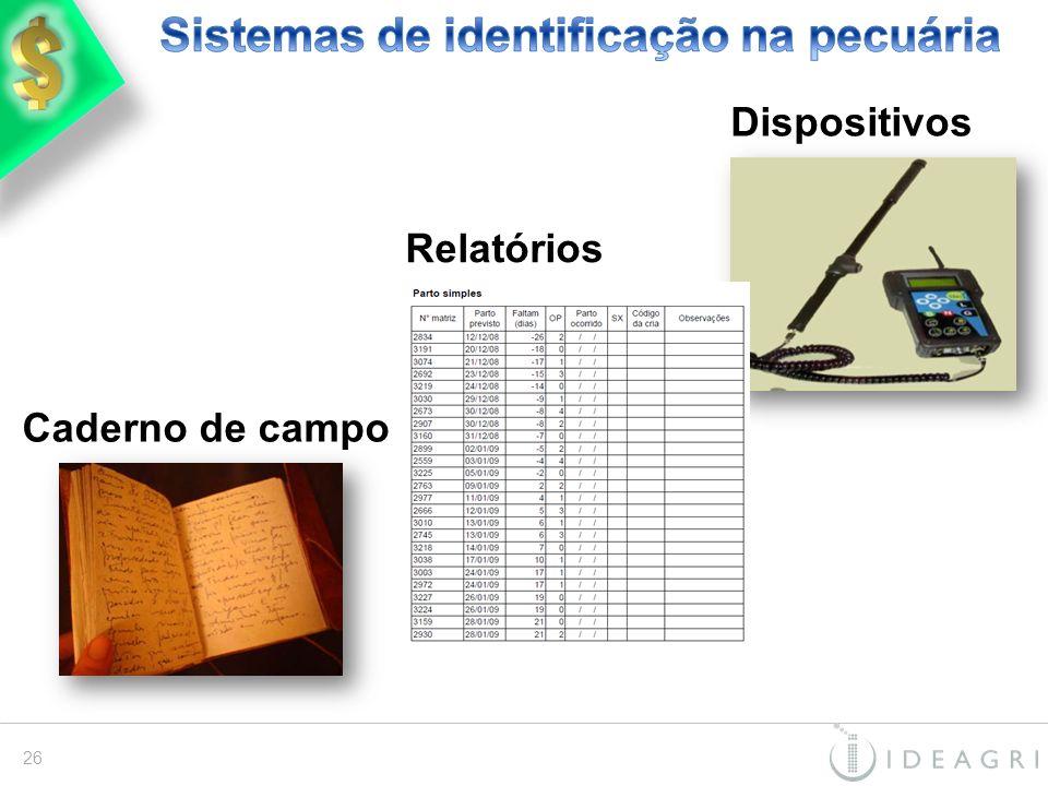 Caderno de campo Relatórios 26