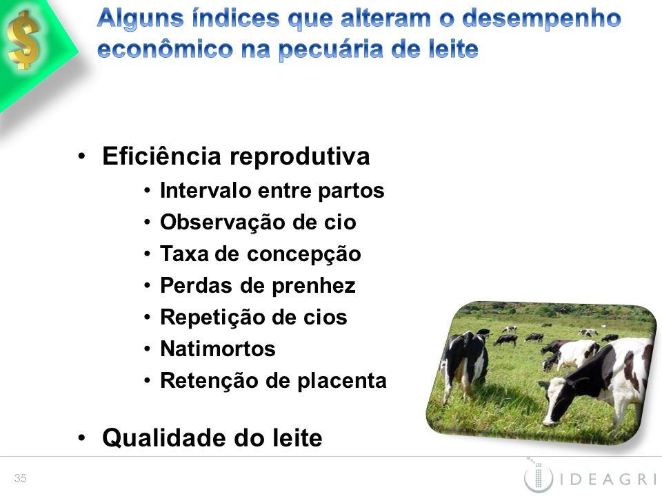 Eficiência reprodutiva Intervalo entre partos Observação de cio Taxa de concepção Perdas de prenhez Repetição de cios Natimortos Retenção de placenta