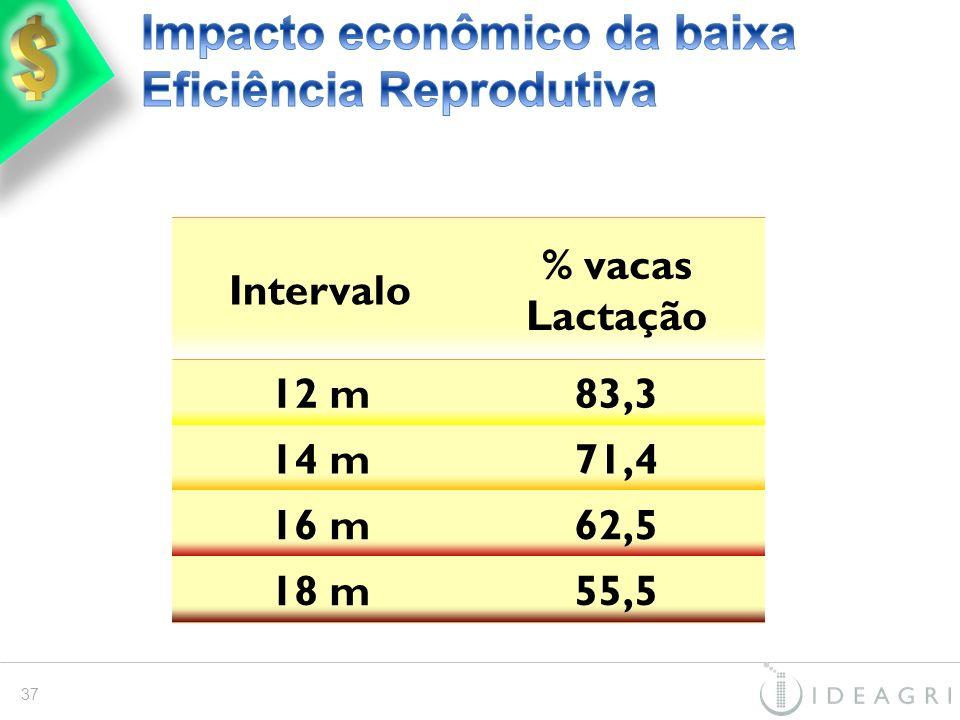 Intervalo % vacas Lactação 12 m83,3 14 m71,4 16 m62,5 18 m55,5 37