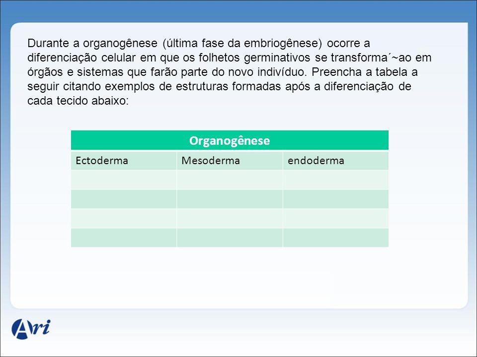 Durante a organogênese (última fase da embriogênese) ocorre a diferenciação celular em que os folhetos germinativos se transforma´~ao em órgãos e sist