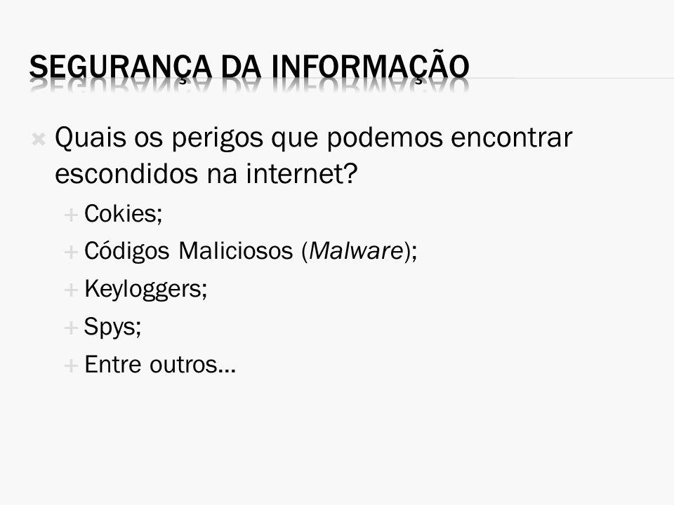 Quais os perigos que podemos encontrar escondidos na internet? Cokies; Códigos Maliciosos (Malware); Keyloggers; Spys; Entre outros...