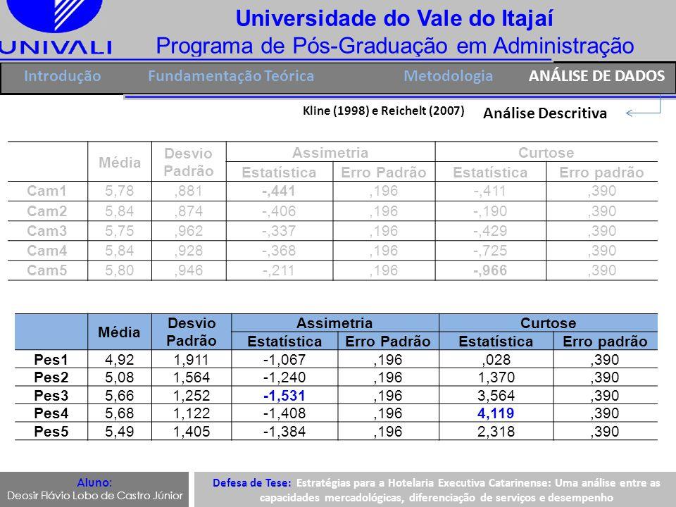 Universidade do Vale do Itajaí Programa de Pós-Graduação em Administração IntroduçãoFundamentação Teórica Análise Descritiva Aluno: Deosir Flávio Lobo